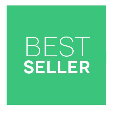 Essay Writing Service Best Price Unique Essays Palmett